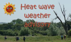 heat wave advisory